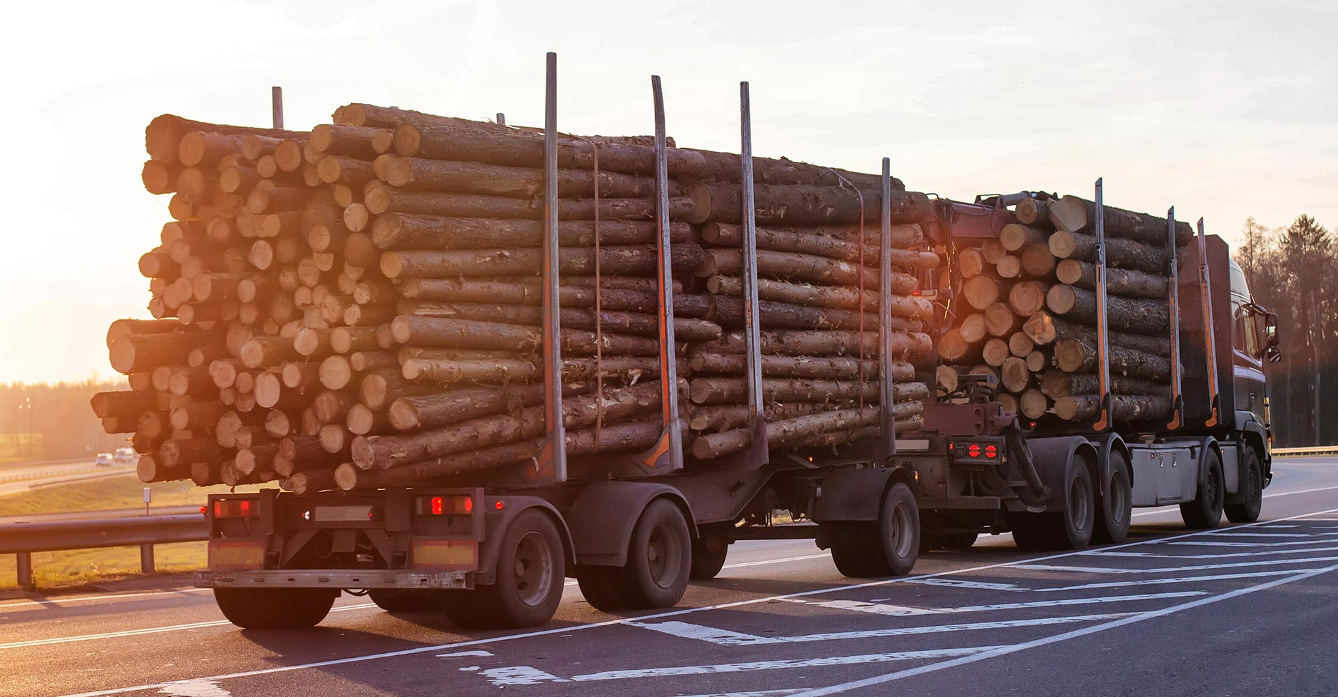 fully-loaded logging truck driving along the road